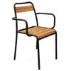 Astra (Iroko) Wood Armchair